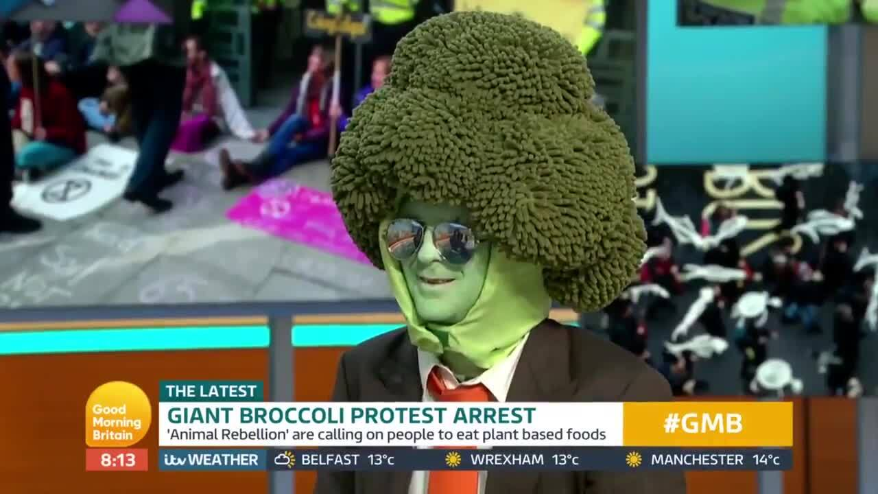 Mr Broccoli: Climate change protester clashes with Piers Morgan as he touts vegan diet on Good Morning Britain