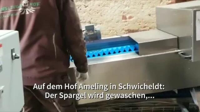 Peine Almeling Spargel