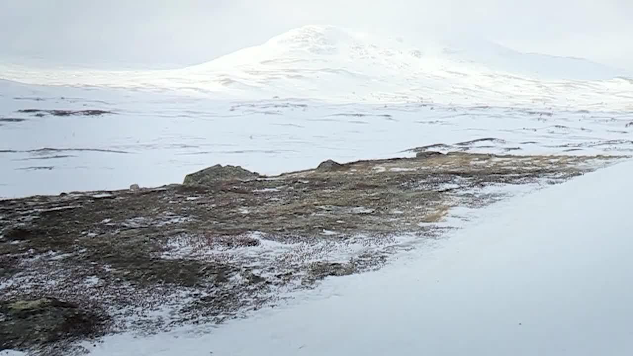 Natur - Sveriges årstider & klimatzoner