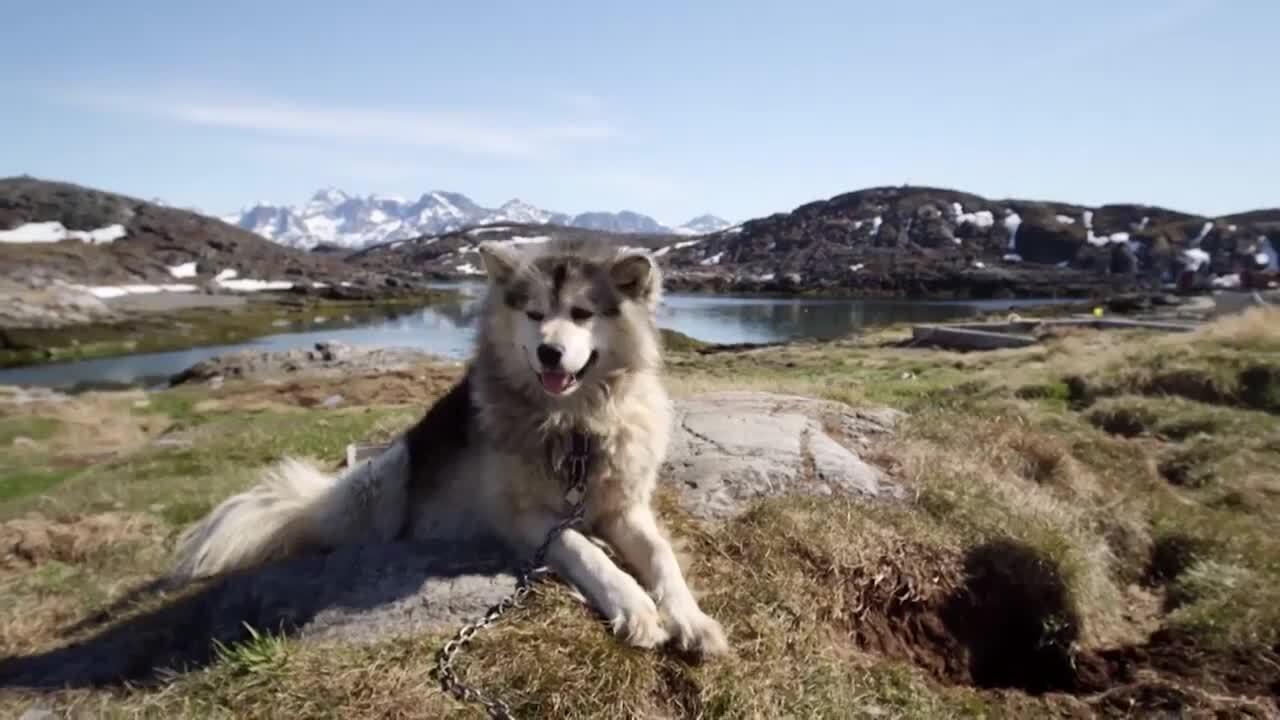 Upptäck Norden – Norges politik och vardagsliv