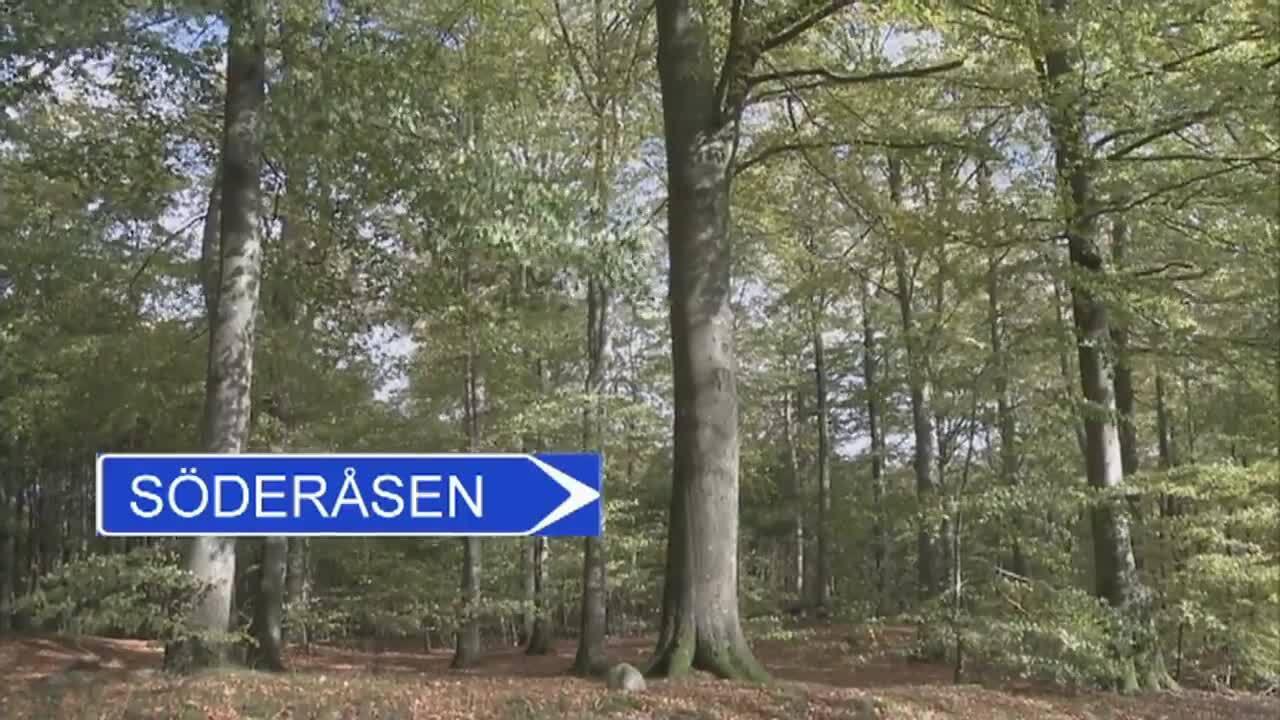 Upptäck Sverige – Skåne