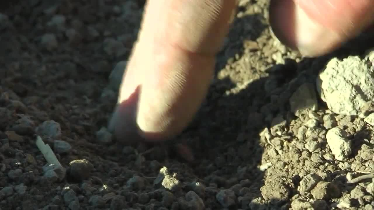 Lantbruk – Så, plöja, harva, skörda