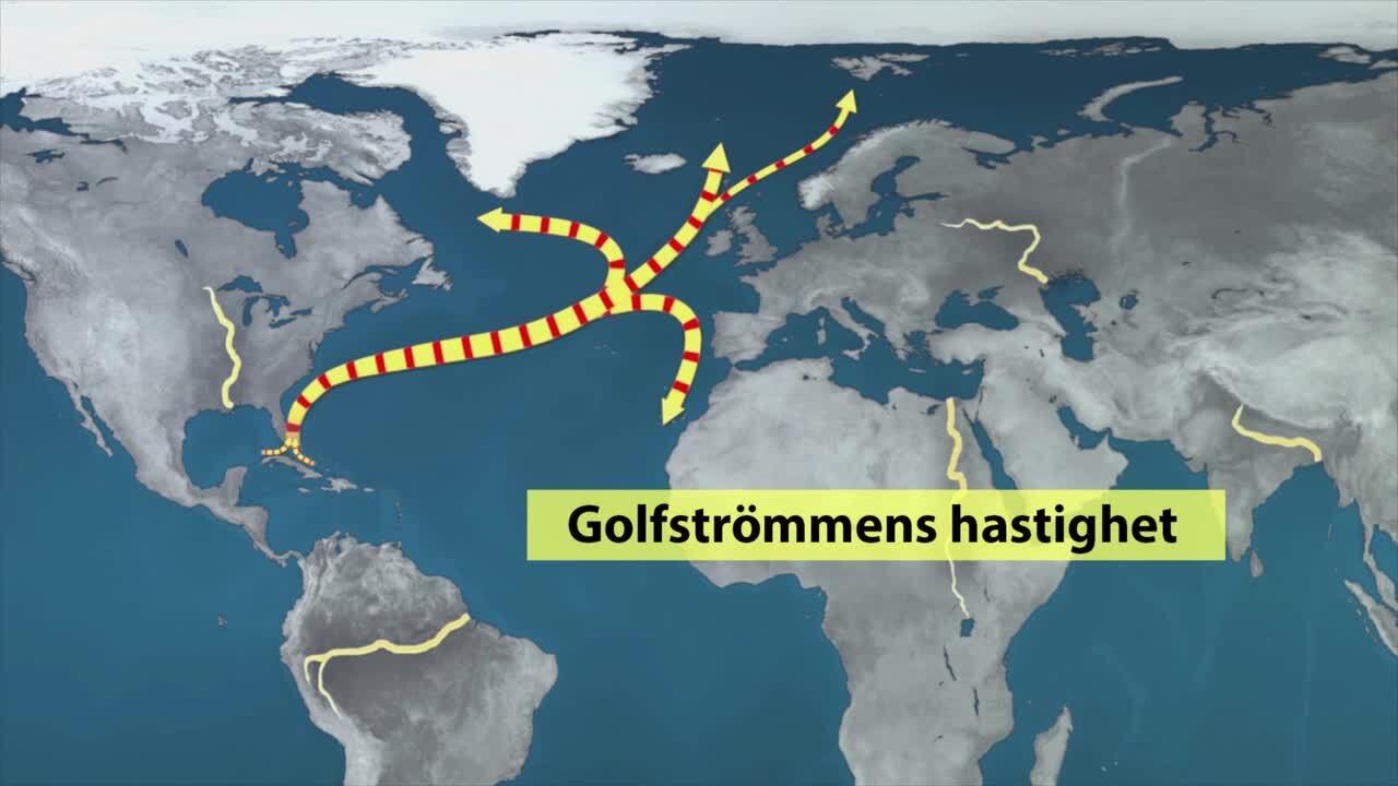 Hav och oceaner – Golfströmmen