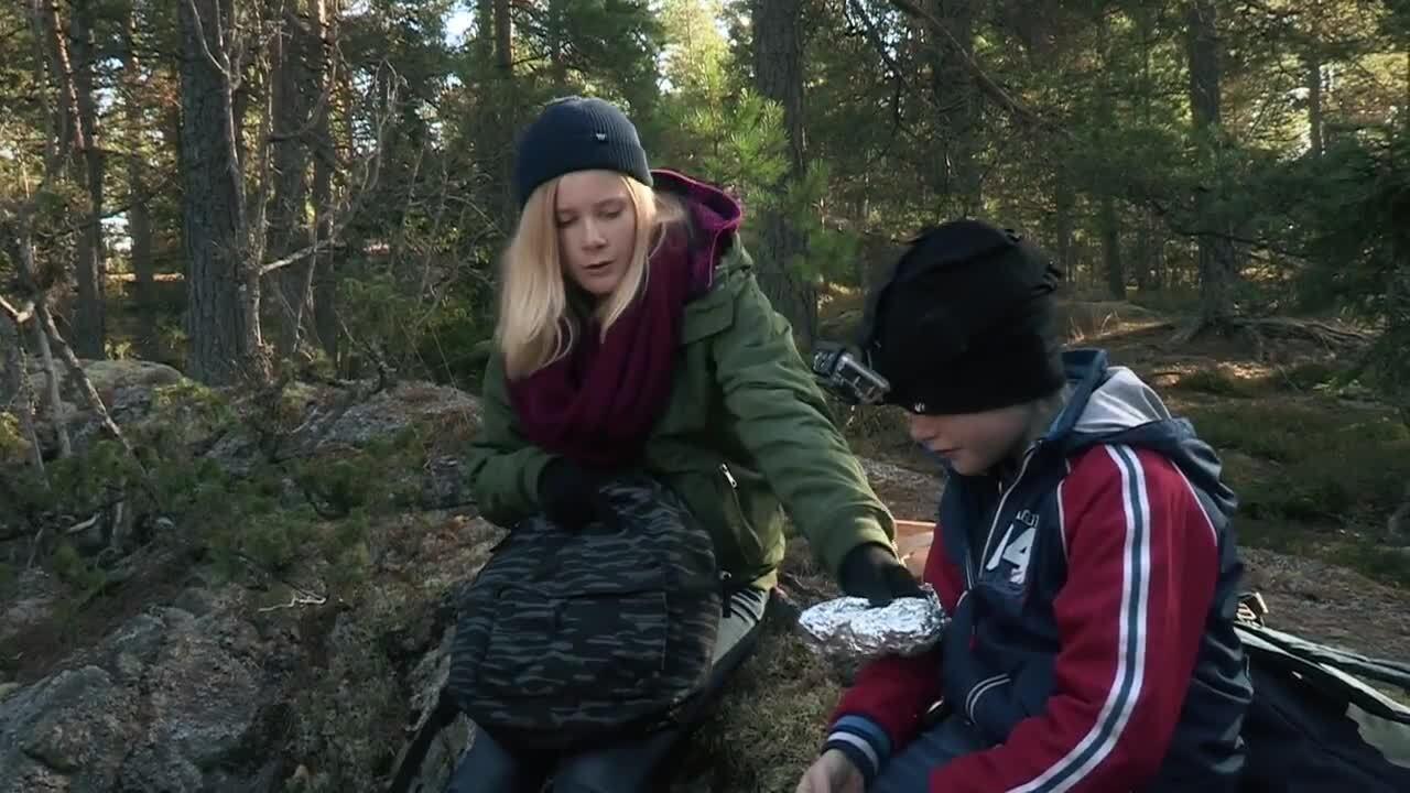 Att gå vilse i skogen