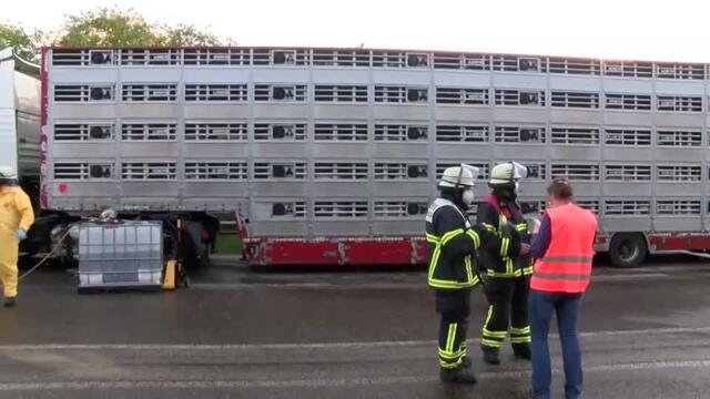 Unfall auf der B404 bei Trittau