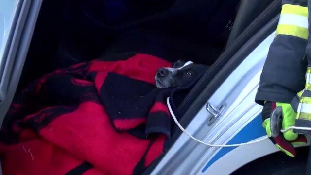 Falschfahrerunfall A24 Hornbek