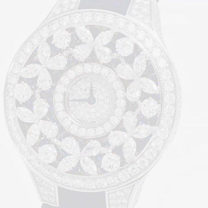 經典蝴蝶腕錶