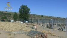 Operacion de la Guardia Civil en un criadero de perros en Burgos