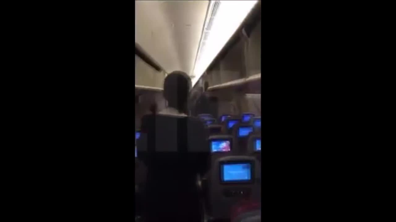 Flight Delayed After Pigeon Gets Trapped Onboard Plane