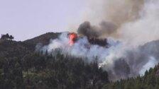 Se elevan a 12.000 las hectáreas calcinadas en el incendio de Gran Canaria