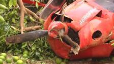 Una avioneta se estrella contra un campo de naranjos y deja dos heridos en Valencia