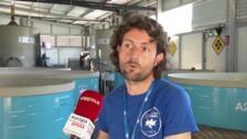 Arca del Mar llega al 97% de éxito en recuperación de tortugas marinas