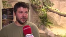 Safari Madrid acerca la sabana africana a la capital