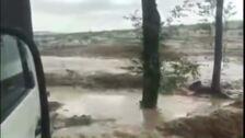"""Una tormenta  """"anega"""" viviendas y """"destroza"""" cultivos en Alaejos"""