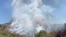 Las llamas avanzan por el monte en el paraje de Peñas Blancas en Estepona