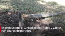 El Parque del Príncipe sufre actos de vandalismo