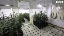 Agentes de la guardia civil de Santa Fe han descubierto un bloque de dos plantas preparado para el cultivo de marihuana