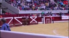 La vaquilla saltarina