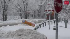 La nieve cubre La Granja y Valsaín, en Segovia