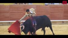 Aparatosa cogida en Palencia del torero Paco Ureña