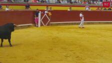 Este salto otorga el cuarto triunfo consecutivo a 'Use' en el Campeonato de Recorte de Palencia