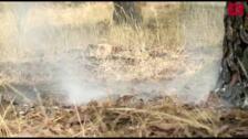 Incendio forestal entre Traspinedo y Sardón de Duero