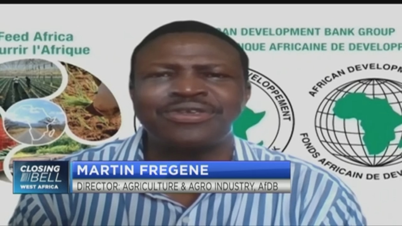 AfDB's Fregene on how big data can drive the future of Africa's agriculture
