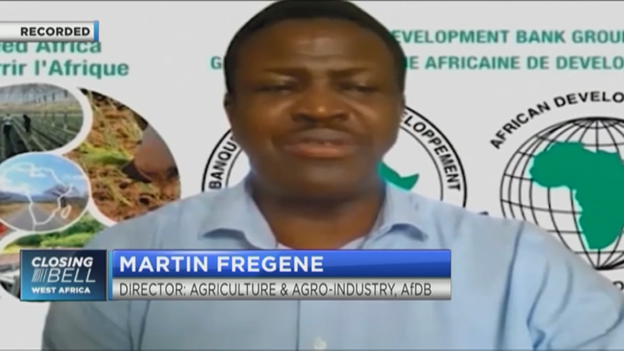 Africa's agriculture value chain needs to be rebuilt, says AfDB's Martin Fregene