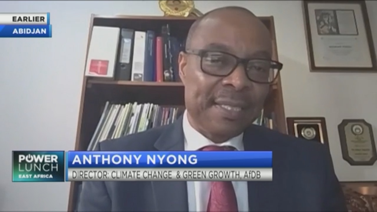 AfDB's Nyong on how to finance Africa's climate adaptation & green recovery