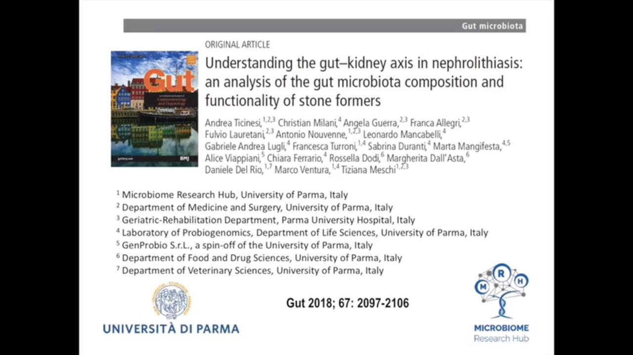 Understanding the gut–kidney axis in nephrolithiasis: an