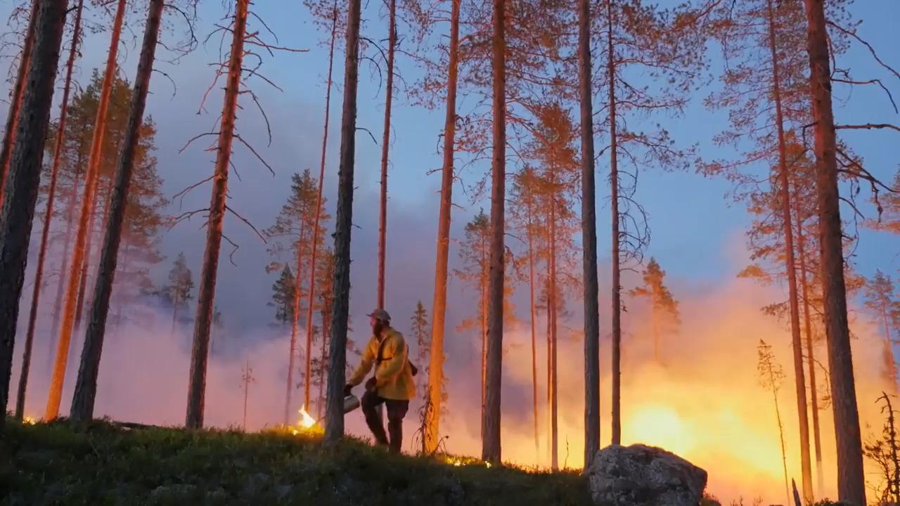 Skogsbränder – ett allt större hot?