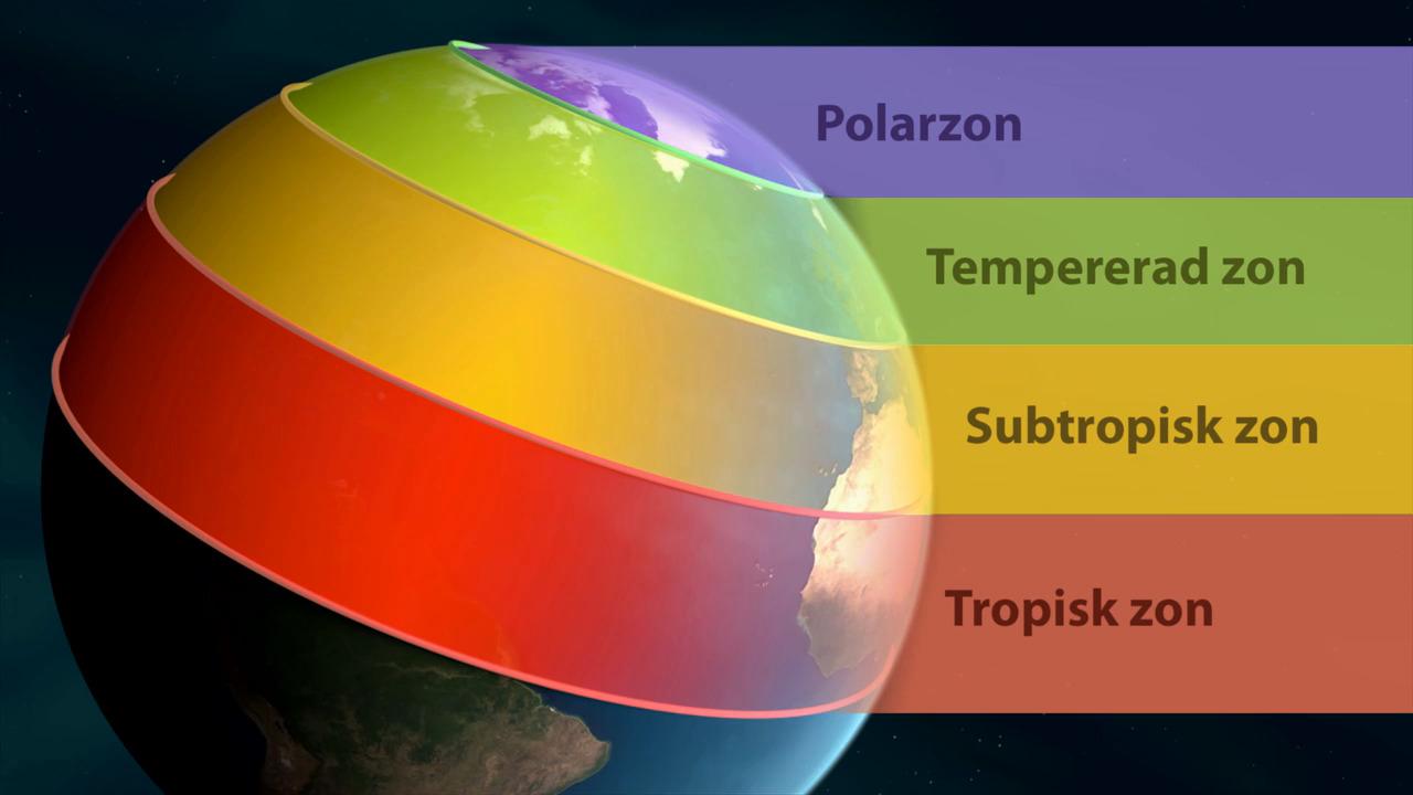Polarzon