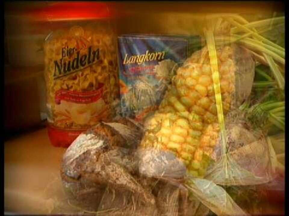 Ämnesomsättning och matsmältningsorganen