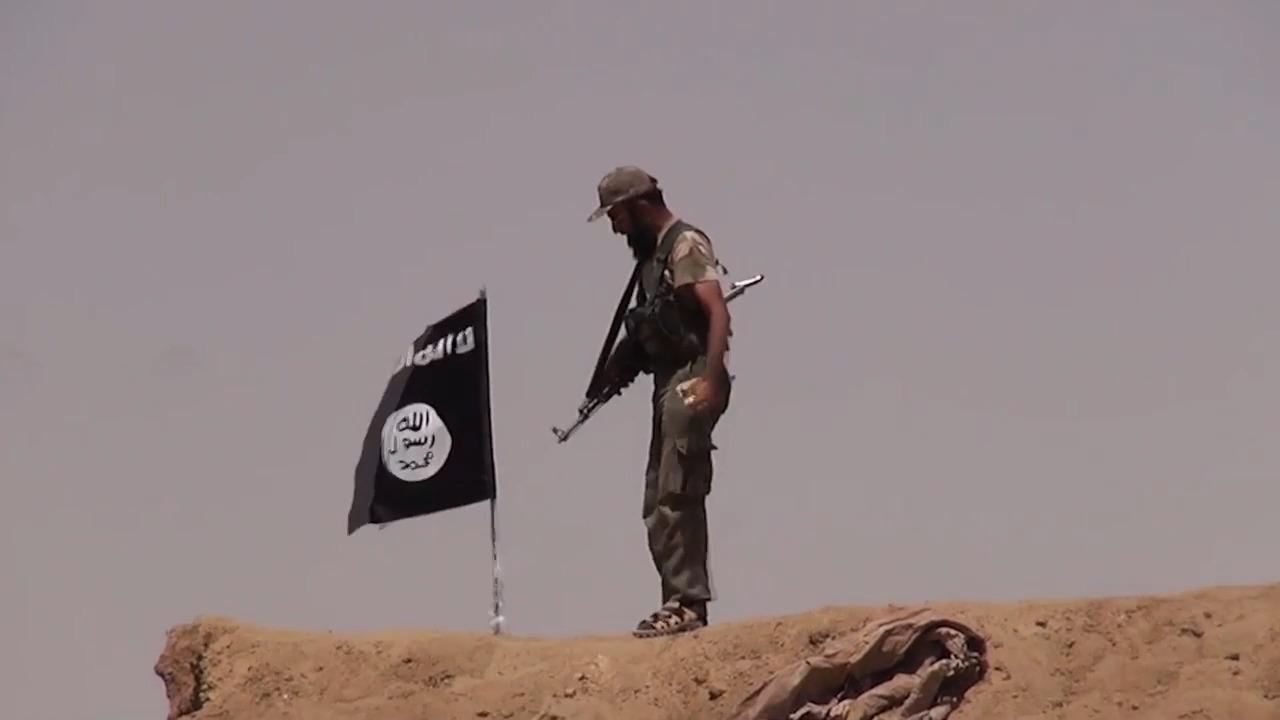 Internationella händelser - Islamiska staten
