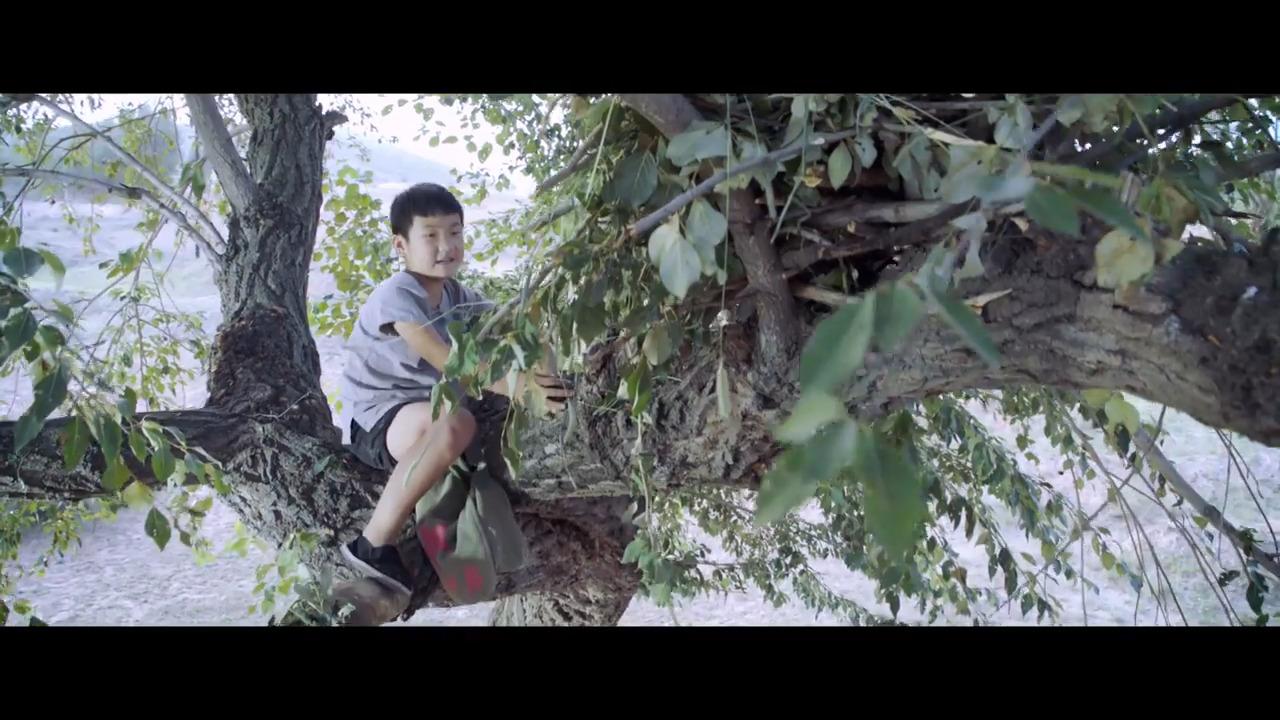 Jag bor hellre i trädet