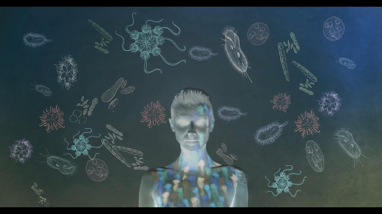 Människans mikrobiom