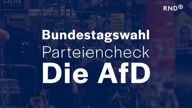 Parteien-Check vor der Bundestagswahl: AfD