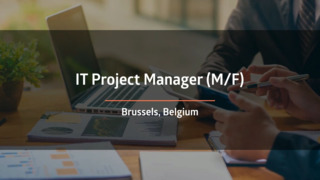 IT Project Manager (F/M)