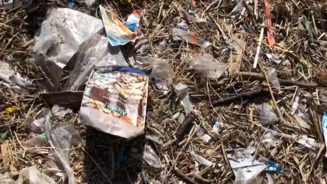 Traurig und schockierend: Plastikmüll im Naturschutzgebiet in Nordwestmecklenburg (J. Schultz | 18.4.2021)
