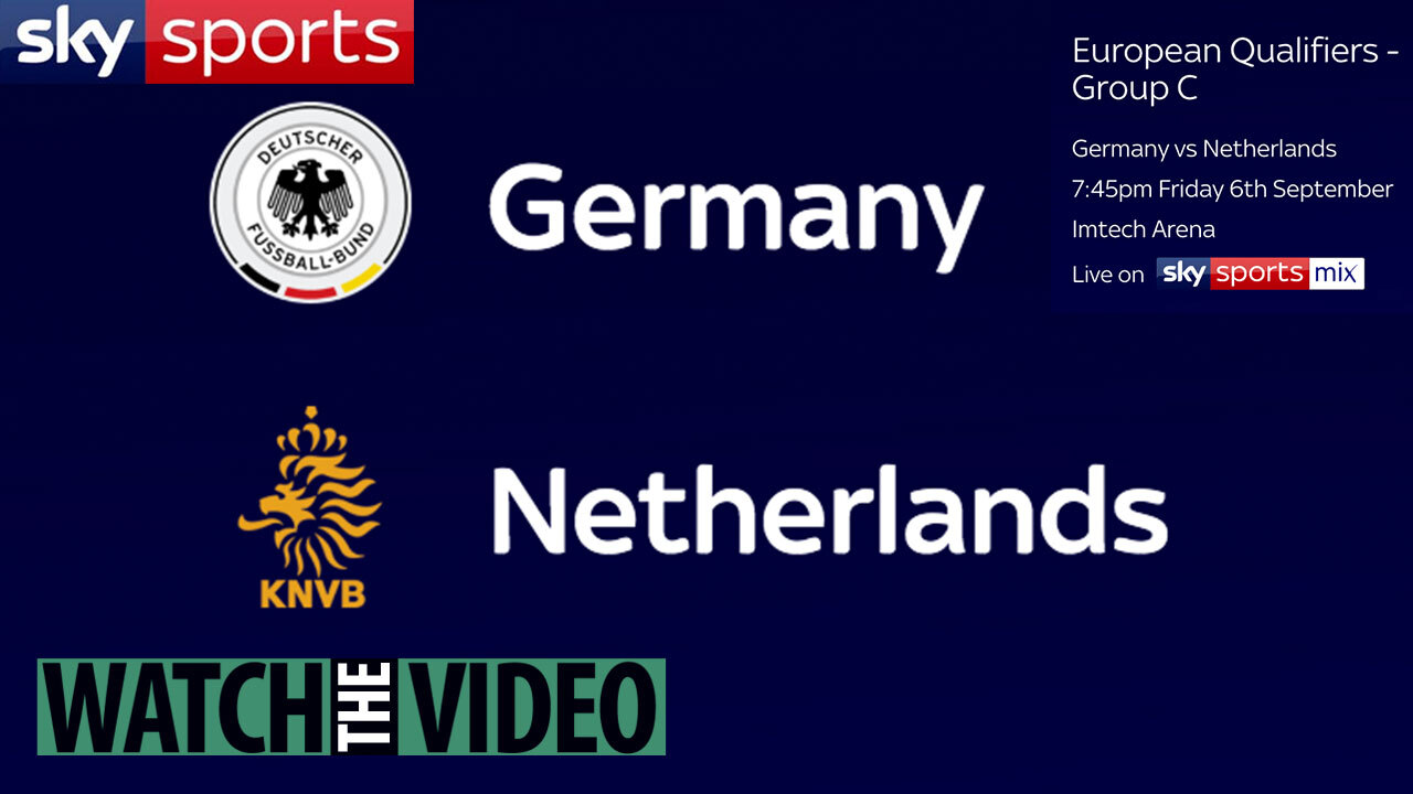 Germany vs Holland live stream FREE: How to watch Euro 2020
