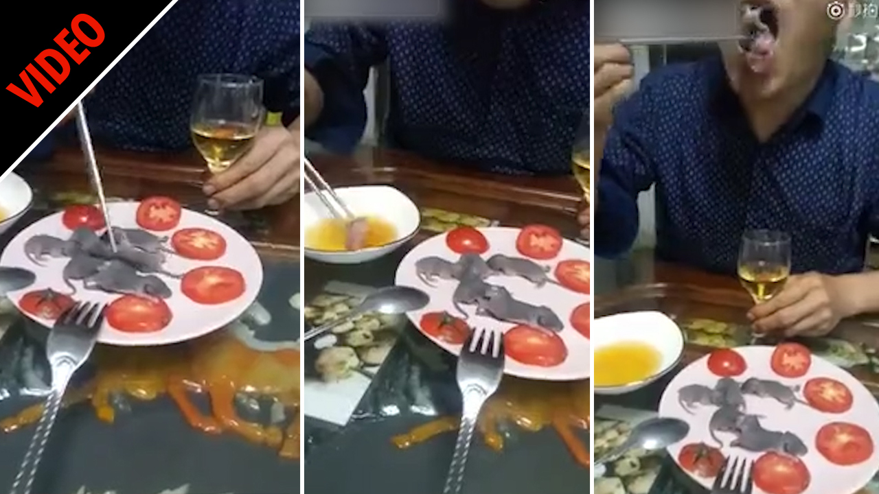 Man eats LIVE baby rats like it's nothing – dipping them in sauce