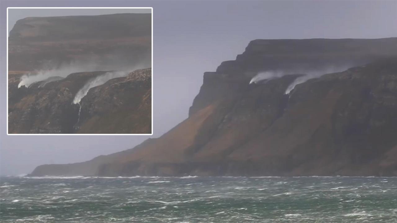 Actor Porno Tony Duart enjoy scotland's west coast on the isle of mull with whale