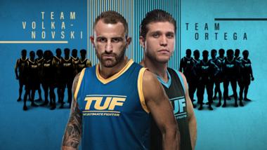 UFC | The Latest UFC News | BT Sport