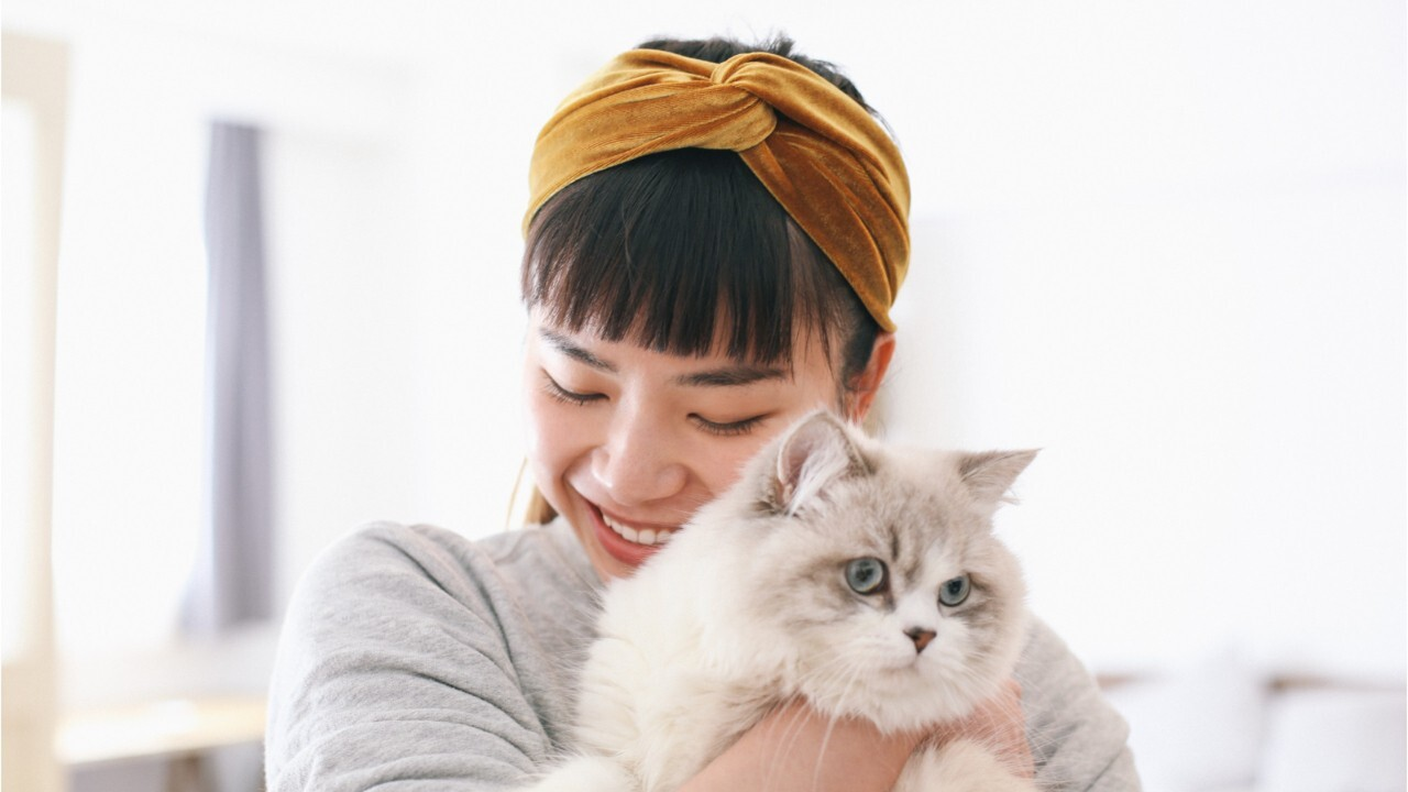 serré asiatique chatte photos