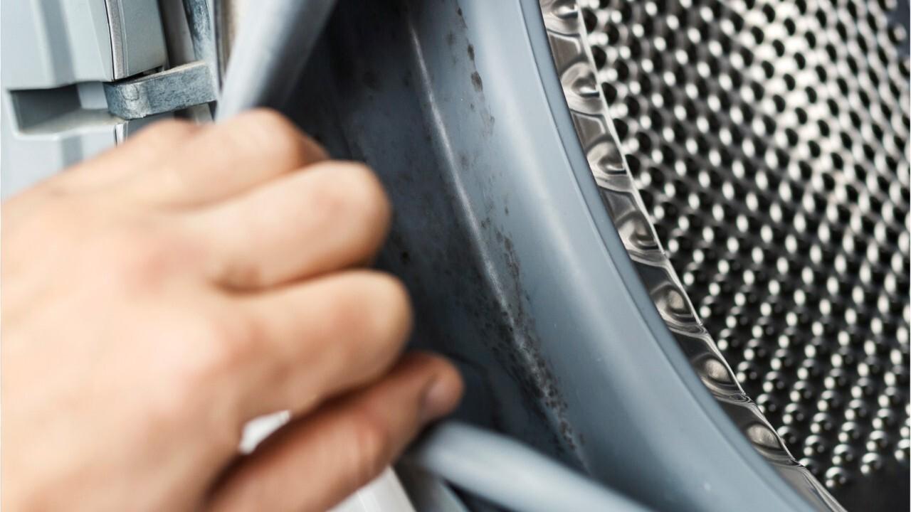 Nettoyage De La Machine À Laver femme actuelle - comment bien nettoyer sa machine à laver ?