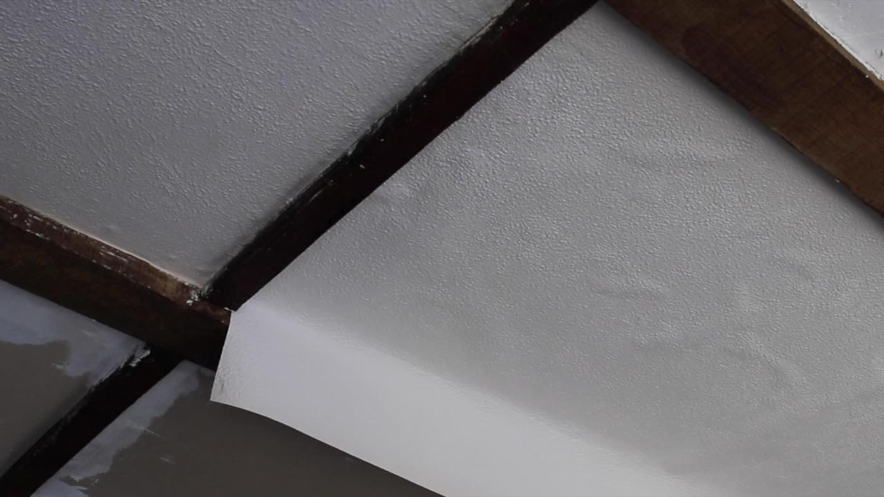Attrayant Comment Poser Un Papier à Peindre Sur Un Plafond ?   Bricolage   Maison    Jardin