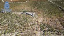 La Policía Nacional controla con drones la campaña de la vendimia en Rioja Alavesa