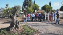 El nuevo parque de Valverde de Leganés mitigará el cambio climático