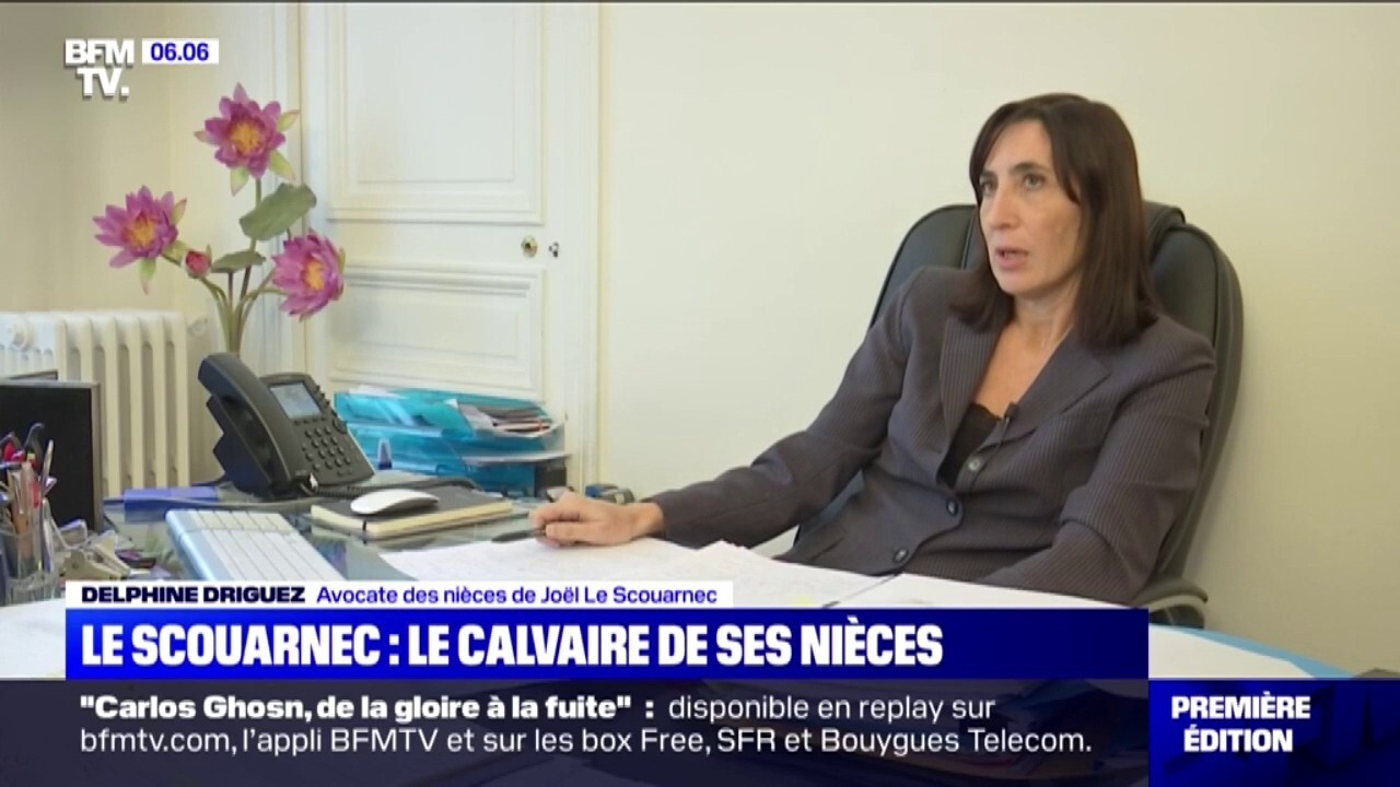 Affaire Le Scouarnec Les Nieces Du Chirurgien Accuse De Pedophile Assurent Que Sa Femme Savait