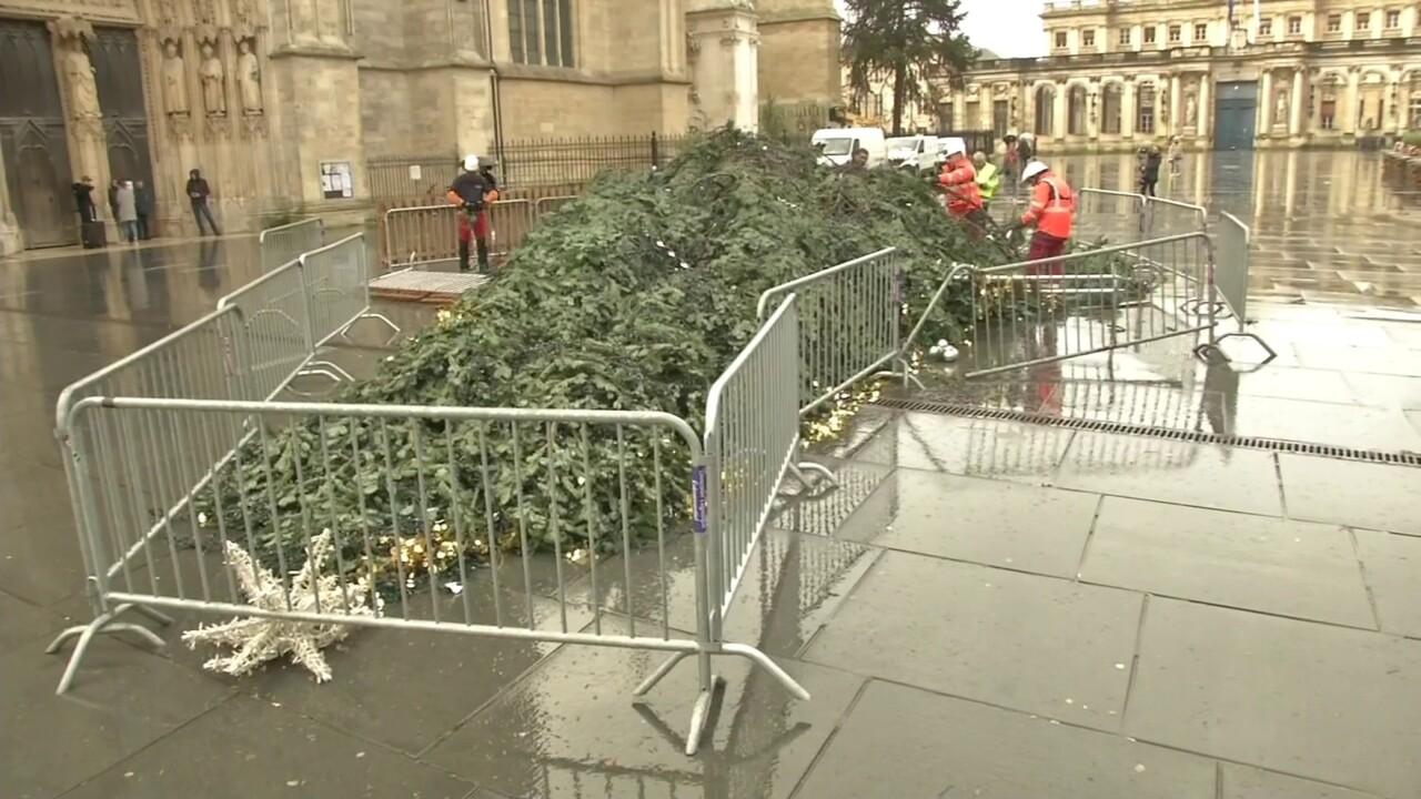 A Bordeaux, la tempête Fabien a fait tomber le sapin de Noël de la mairie